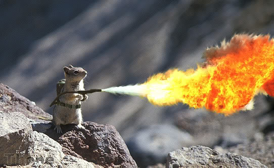 SquirrelFlameThrower.jpg