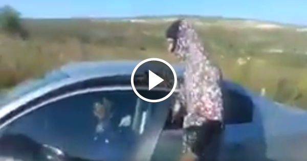 WATCH: Soldiers Dress as Muslim Women to Ambush Terrorist