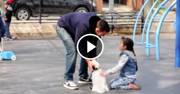 Video reveals something HORRIBLE about kids on public playgrounds